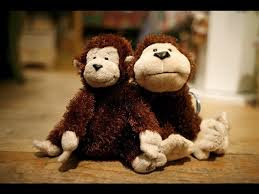 monkeys sitting