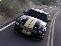 2007 shelby gt 350