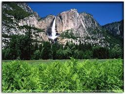national parks yosemite
