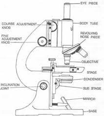 monocular compound microscope