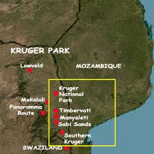 kruger safari park