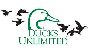 ducks unlimited backgrounds