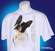 boston terrier shirt