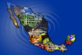 biodiversidad de mexico