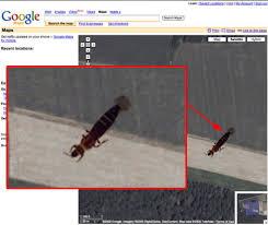 google maps fun