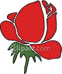free clipart rose