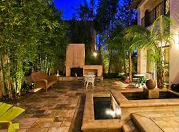 plants for patio