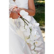 orchids bridal bouquet