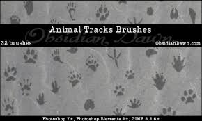 animal hoof prints