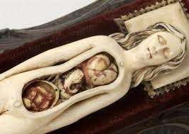 human body exhibits