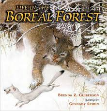 animals that live in the boreal forest