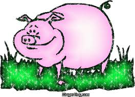 graphic pig