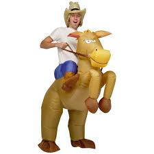 horse riding costume