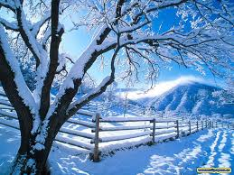 free wallpaper snow