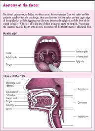 follicular tonsillitis