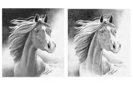 horse drawings pencil