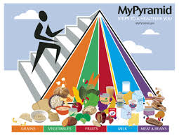 daily food guide pyramid