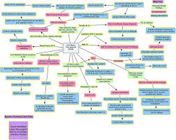 concept mapping nursing
