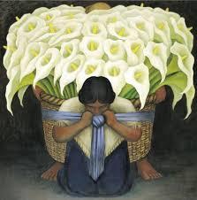 alcatraces flores