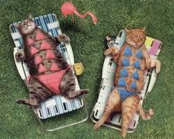 get a tan
