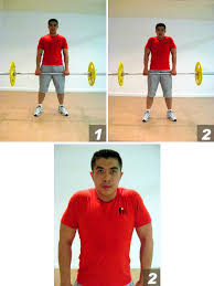 barbell shoulder shrugs