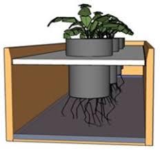 hydroponic nft