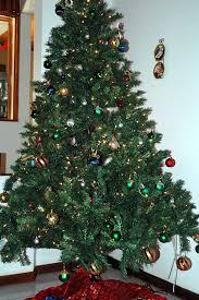 costa rican christmas