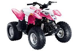 pink polaris