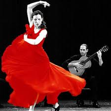 fotos de flamenco