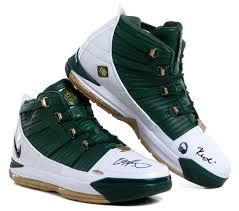 lebron basketball shoe