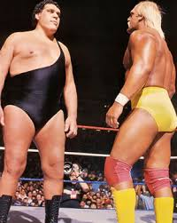 hulk hogan vs