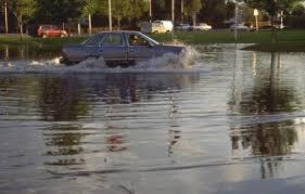 mike flood