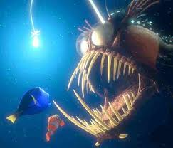 finding nemo animals