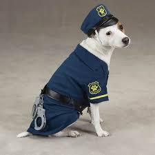 costume cop