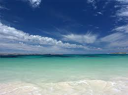 kangaroo island in australia