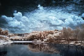 digital infrared photo