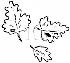 black and white leaf clip art