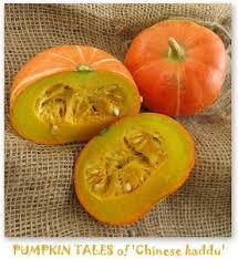 chinese pumpkin