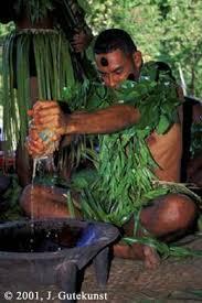 fiji islands culture