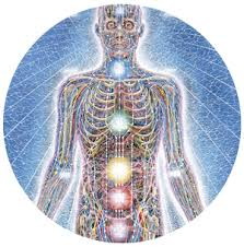 body energy systems