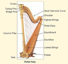 harp notes