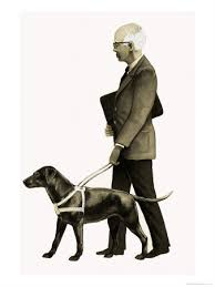 guide dog blind