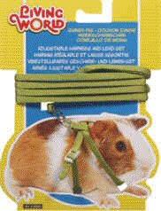 guinea pig harnesses