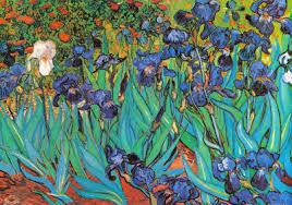 irises saint remy