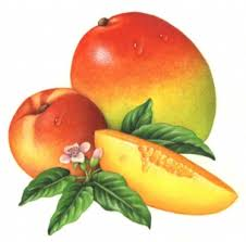 peach fragrance