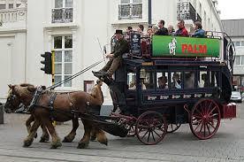 bus horse