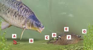 in line feeder
