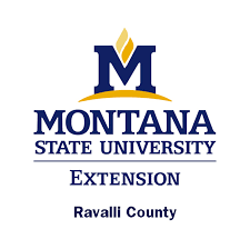 montana state colors