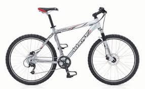 giant iguana bike