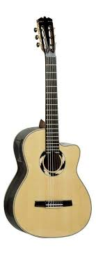 hohner acoustic bass